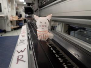 イメージスキャナーの上でくつろぐShima。Shimaもサンプリング台でよく見かけます。